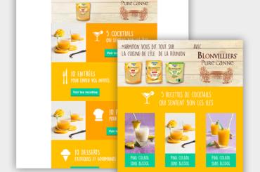 Webdesign pour Marmiton et Blonvilliers